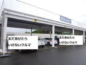 P1090711