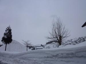 s-snow (1)